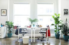 Inside An L.A. Office That Masters Bright Color  #refinery29  http://www.refinery29.com/homepolish/3#slide3  Live plants help to brighten up the space — and make for better breathing.