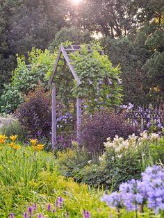 Truly A Dream Garden – Everyday Living