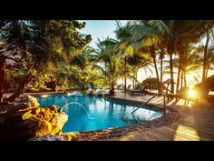 Join us on a tour of our tropical, luxury, eco-friendly resort situated on the beach in San Pedro, Ambergris Caye, Belize. It's the perfect place for both re. Ambergris Caye, Island Resort, New Travel, Travel Agency, Running Away, Central America, Beach Resorts, Belize, Perfect Place