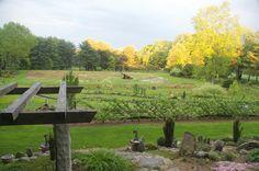 Grass Acre