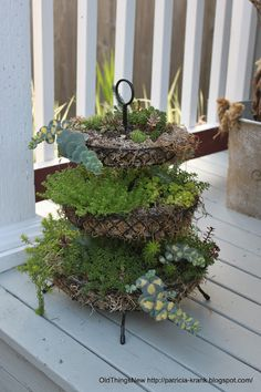 use faux succulents in my tiered trays?