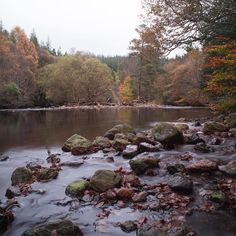 River Avonmore #river #wicklow #ireland #nature #outdoors #water #wanderingshane #ireland