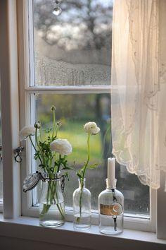 vintage, window, flowers, vases.