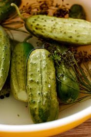ben and birdy: Dill Pickles
