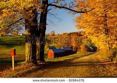 New England Fall Colors Panorama   New England Fall Colors Stock Photo 82864276 : Shutterstock