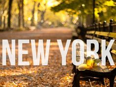 New York Things To Do Spotted By Locals