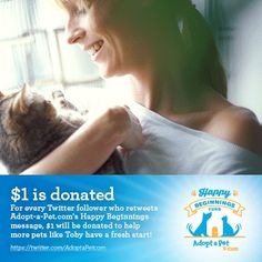 We Need You, Lost Pets, Losing A Pet, Four Legged, Animal Shelter, Pet Adoption, The Fosters, Something To Do, Washington