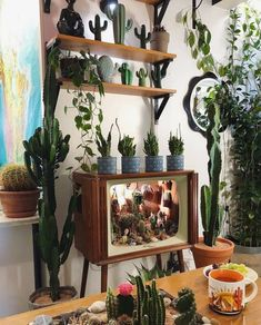 42 Amazing Indoor Garden Decorations Tips and Ideas A well kept indoor garden is a gift that keeps on giving. Not only can a good group of houseplants improve your mood and your home's air quality, they make a stylish addition to just about any space. Plant Wall, Plant Decor, Ideias Diy, Small Space Gardening, Boho Living Room, Plant Shelves, Apartment Living, Apartment Plants, Indoor Plants