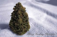 If all you want for Christmas is to get high.