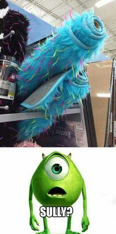 Sully?