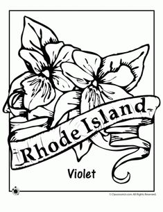 State Flower Coloring Pages West Virginia State Flower
