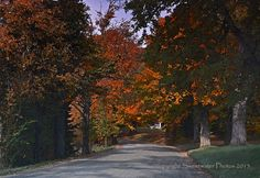 Purchase beautiful images from the Northeast Kingdom of Vermont! Vermont, Beautiful Images, Canopy, Country Roads, Photos, Fence, Canopies