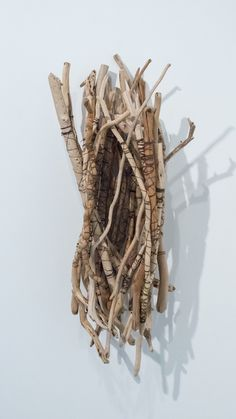 """Tracy Deep from her series """"Desert Song"""" As an artist, nature is not only her source of inspiration but also her medium and subject matter. She obsessively gathers all sorts of organic detritus such as dried tree branches, seed pods, kelp, raffia, and driftwood and breathes a second life into them, transforming them into ethereal, woven sculptures that enunciate her fascination for the natural world around her."""