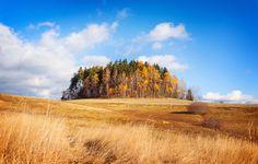 Golden Autumn by Kamil Lehmann on 500px