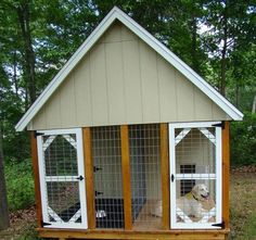 amazing dog house
