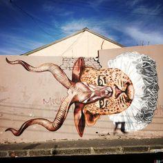 Freddy Sam, Gaia ha da poco terminato un altro dei suoi tipici lavori, a Cape Town. L'incrocio di più animali in un'unica figura, il risultato finale è sempre molto scenico e divertente: una bella fusione tra un ghepardo e un capriolo. Ma qualcuno non apprezza... http://pinterest.com/pin/281686151665360467/ #StreetArt