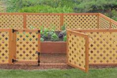 Pretty garden lattice fence