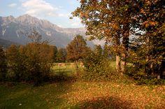Wandern mit Hund im Herbst in Söll, Tirol, Österreich (c) TVB Wilder Kaiser  Hundemeile in Söll vorstellen. Die Meile führt entlang eines kühl vor sich hin sprudelnden Gebirgsbaches, worin sich Ihr Hund erfrischen kann, abseits von Wiesen und Äcker. Außerdem lässt er sich durch die Nähe auch wunderbar an die Wanderung anschließen. Es gibt dort noch einen öffentlichen Hundespielplatz und einen Auslaufplatz, wo sich Ihr Vierbeiner noch mal richtig austoben kann.  Wandern mit Hund - Tirol…