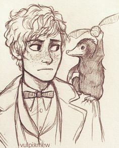 Niffler: *holds the snitch* newt: where did you even get tha Fanart Harry Potter, Harry Potter Drawings, Harry Potter Fandom, The Beast, Yer A Wizard Harry, Fantastic Beasts And Where, Harry Potter Universal, Hogwarts, Character Design