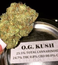 OG KUSH This #topshelf strain is great to alleviate any stress or painful migraines Make Chula Vista Meds your next stop for bud  #og #kush #indica #hybrid #sativa #cannabis #ganja #bud #weed #Buddha #flower #420 #prop215 #chulavista