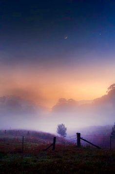 Early morning mist...freshness