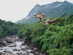 流木の魂 森に帰る-4  ★  #流木オブジェ #流木 #流木アート #屋久島アート #インテリア #Driftwood Art #Interior  #流木の鳥