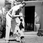 Don Ameche plays with his dog Old Hollywood Actors, Classic Hollywood, Springer Dog, Don Ameche, Dog Information, Black White Photos, Dog Houses, Dog Photos, Hanging Out