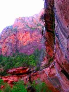 Emerald Pools, Zions National Park ♡