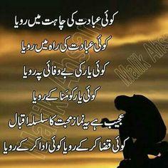 Wonderful words of Baba Bulleh Shah Sufi Quotes, Poetry Quotes In Urdu, Best Urdu Poetry Images, Love Poetry Urdu, Urdu Quotes, Quotations, Qoutes, Nice Poetry, Love Romantic Poetry