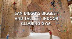 Mesa Rim Indoor Rock Climbing San Diego ^^ Biggest Rock Climbing Gym