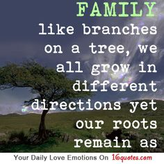 FAMILY like branches on a tree, we all grow in different directions yet our roots remain as.