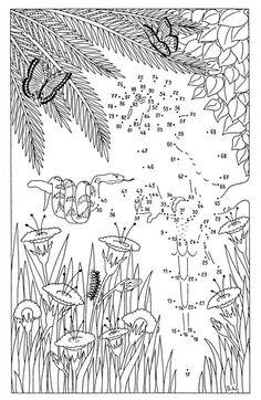 Die Zahlen von 1 bis 90 müssen der Reihe nach verbunden werden, dann kommt ein Papagei im Dschungel zum Vorschein. Die Malen-nach-Zahlen-Vorlage für Kinder erhalten Sie gratis zum Download.