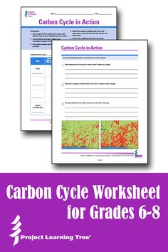 Carbon dating activity worksheet post lab questions frog