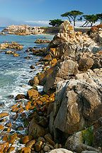 I miss Saturday trips to Monterey Bay and then eating at Lover's Point.