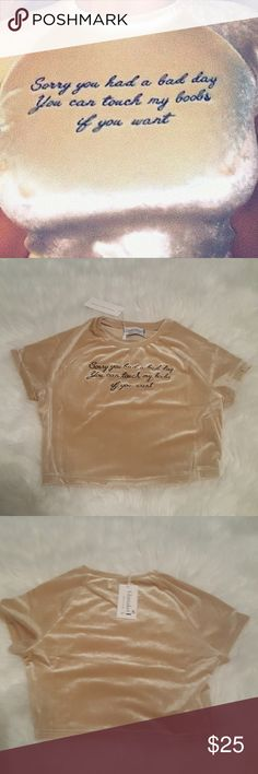 Touch my B👀BS Crop Top New with tags! Size small and true to its size. Tan velour. Offers welcome! Tops Crop Tops