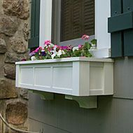 Window Box Inspiration