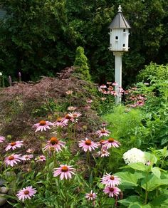 Decorative Bird House In Garden