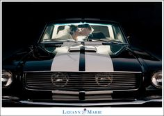 antique car wedding photography http://www.leeannmariephotography.com