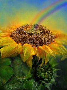 Rainbow Sunflower Mixed Media by Carol Cavalaris