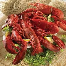 Here's a collection of the best lobster recipes gathered from around the world. These new and classic lobster recipes will put a spin to any meal. Check out these lobster recipes. Lobster Gram, Live Maine Lobster, Live Lobster, Lobster Dinner, Crab And Lobster, Fish And Seafood, Lobster Feast, Baked Lobster Tails, Frozen Lobster Tails