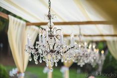 Chandeliers add the perfect glamour details to an outdoor wedding - Bliss Wedding Design + Dmitri and Sandra Photography Maui Weddings, Island Weddings, Hawaii Wedding, Destination Wedding, Wedding Planning, Wedding Themes, Wedding Designs, Wedding Decorations, Wedding Table