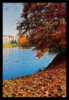 Szczecin, Poland Copyright: Maciej Werstak