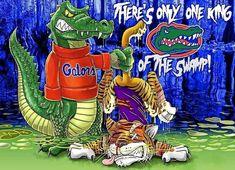 Fla Gators, Florida Gators Football, Gator Football, College Football, Football Stuff, Football Players, Uf Vs Lsu, Florida Gator Memes, Florida Gators Wallpaper