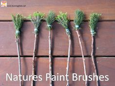 Textured Painting - Natures Paint Brushes