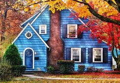 Little Dream House ~ Mike Savad  saw houses like this in small towns in ILL