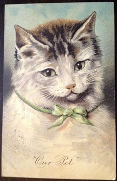 """Vintage 1900's """"Our Pet"""" Cat Postcard"""
