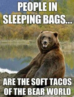 Bear world tacos