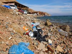 Pollution washed up on the shore at the Blue Hole, Dahab
