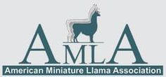 Home page of the American Miniature Llama Association Reward And Recognition, Llama Arts, St Joan, History Page, Animals For Kids, Art Logo, Better Life, Small Groups, Miniatures