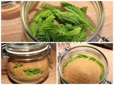 , fir syrup, homemade cough syrup, the fresh fir or spruce tips are alternately layered with raw sugar in a glass and until the sugar dissolves put in a sunny Healing Herbs, Medicinal Herbs, Superfood, Health And Nutrition, Health And Wellness, How To Stay Healthy, Healthy Life, Homemade Cough Syrup, Belleza Diy